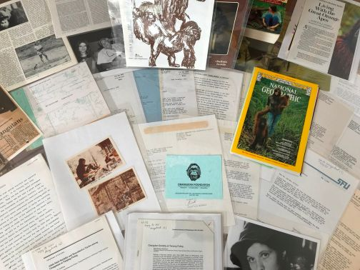 The Leakey Archive
